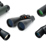 Top 10 Best Binoculars for Bird Watching and Outdoors