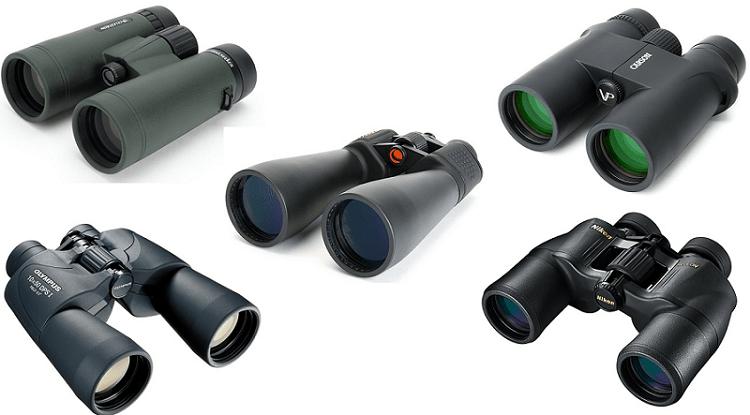 Top 10 Best Binoculars for Bird Watching and Outdoors